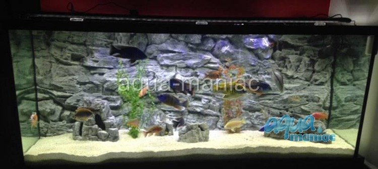 aquarium background for juwel aquarium rio 400 3d grey. Black Bedroom Furniture Sets. Home Design Ideas