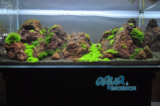 Aquarium lava rocks for your fish tank hard scape for Natural fish tank