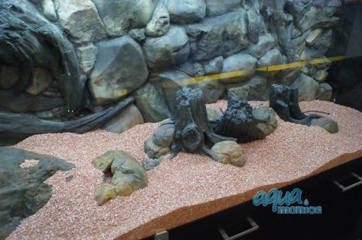 Small aquarium stone in beige colour