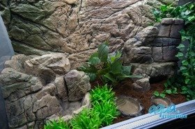 Mini Terrarium Waterfall 01M  - 20cm high