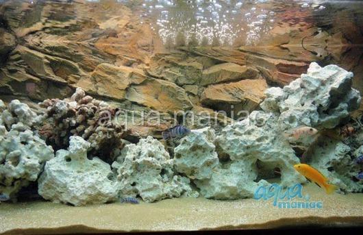 3D beige rock background 196x54cm