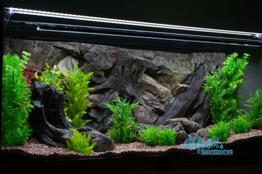 3D root background 117x45cm