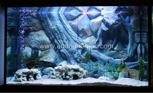 3D Background Amazon 97x45cm to fit Aqua Oak 110 Aquarium