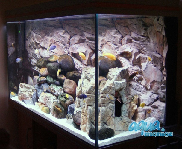 Fluval Roma 90 rock background 58x40cm 1 section