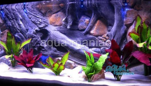 JUWEL RIO 125 3D amazon background 78x42cm