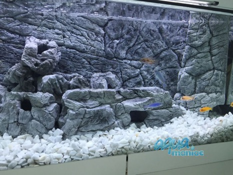 JUWEL Vision 180 3D thin grey rock background 90x45cm in 2 sections