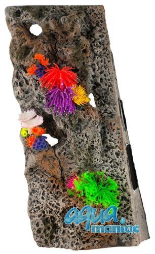 Module Limestone Background 30x50cm with corals