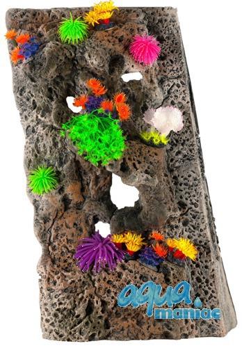 Module Limestone Background 40x40cm with corals