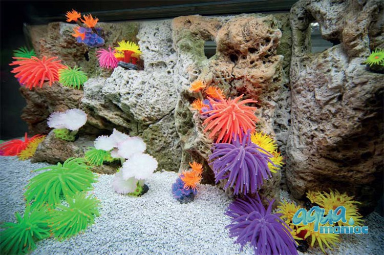 Modules of Limestone Background with corals to fit 60X30cm aquarium