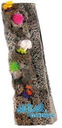 Module Limestone Background 10x50cm with corals